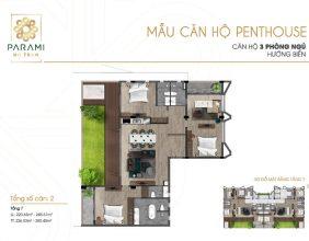 Mẫu thiết kế căn hộ Penthouse