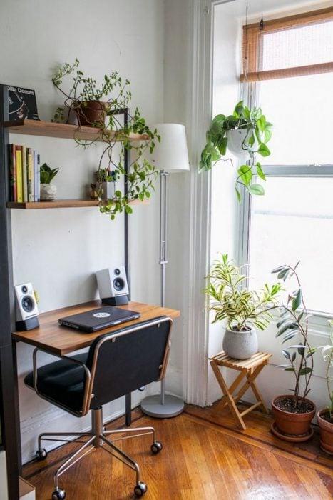 Thiết kế bàn để máy tính kết hợp với cây xanh
