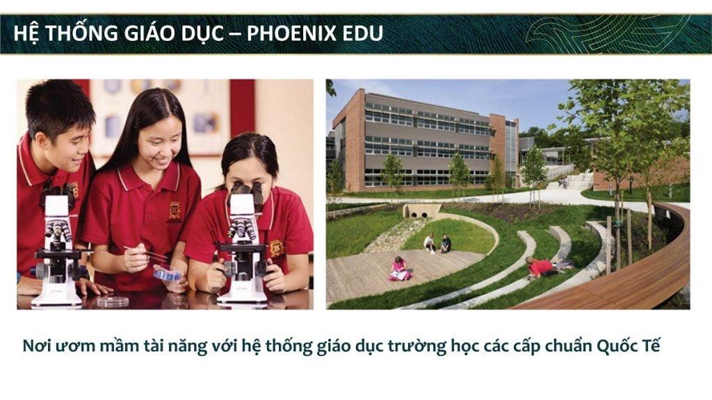 Hệ thống trường học các cấp Phoenix Edu