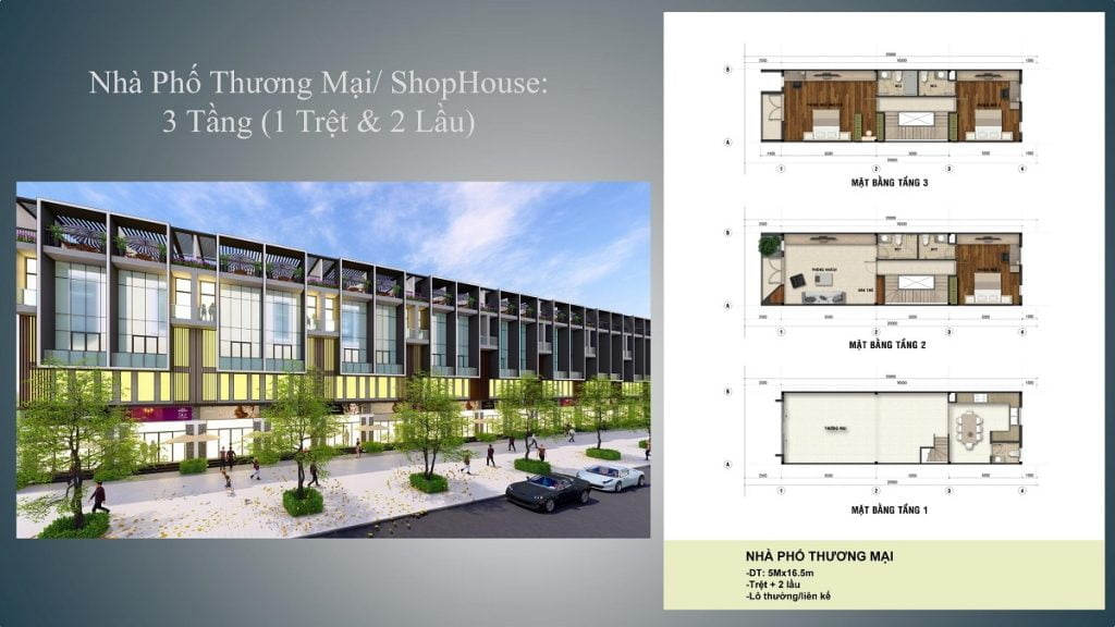 Thiết kế dãy nhà shophouse Long Hội Central Point