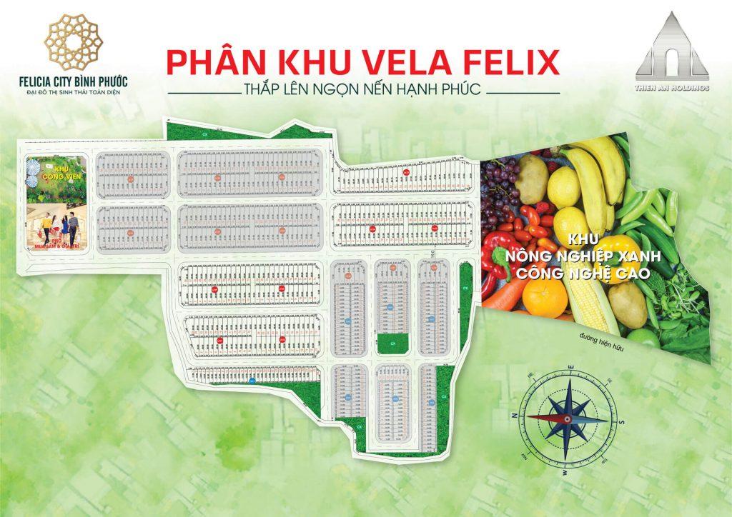 Mặt bằng Phân khu Vela Felix Felicia City