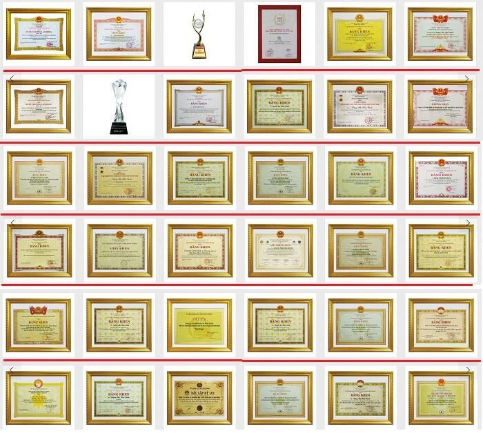 Một số các giải thưởng, bằng khen, danh hiệu mà Kim Oanh được trao tặng