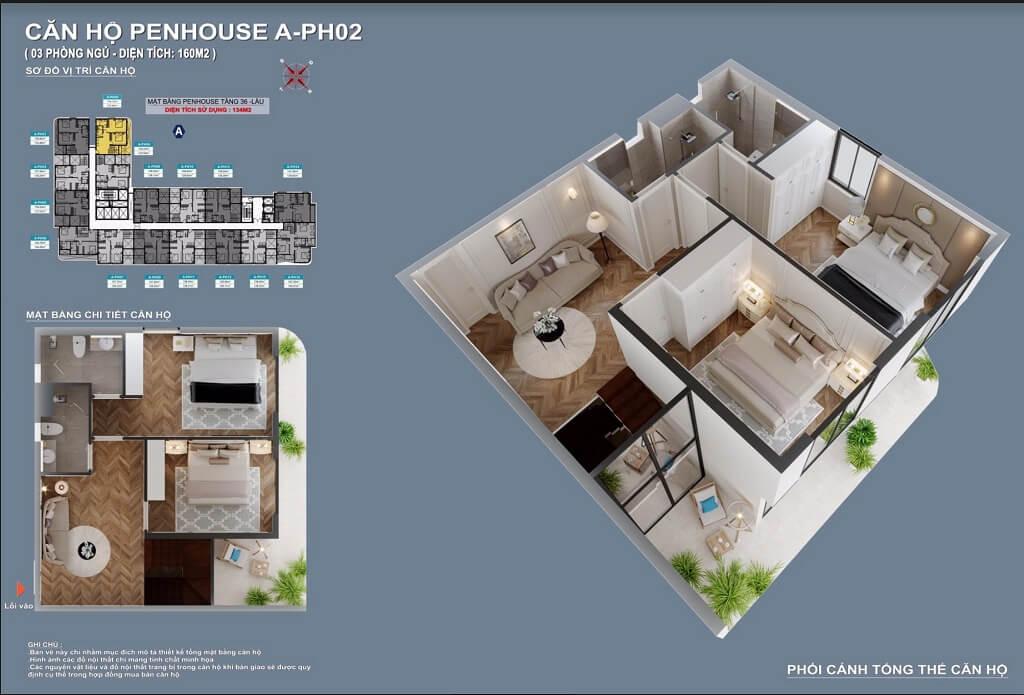 Thiết kế căn hộ Penthouse C - Sky View